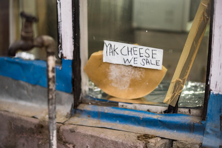 """Yak cheese we sale"""